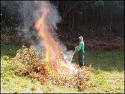divieto di bruciare residui vegetali